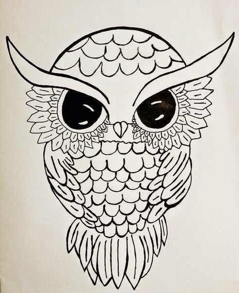 Рисунки животных для срисовки (30 картинок