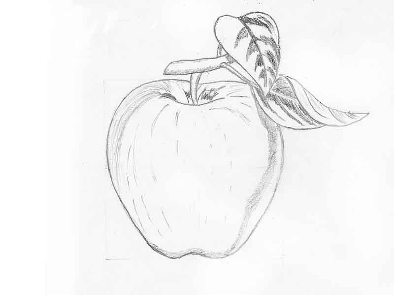 Картинки карандашом для срисовки легкие для начинающих (30 ...