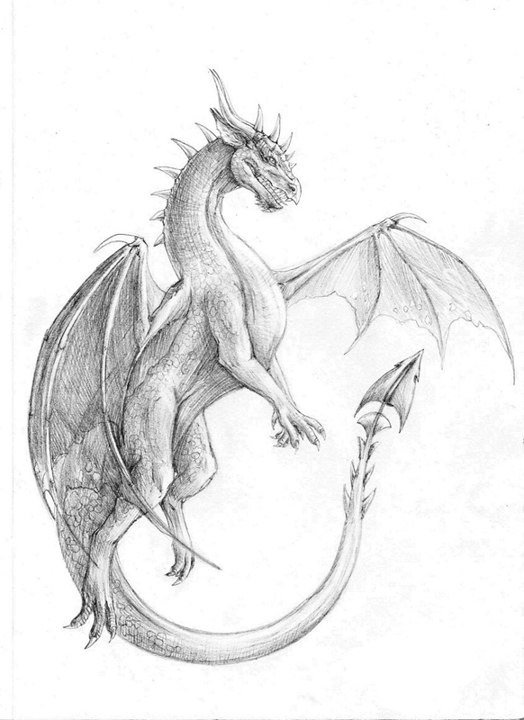 драконы фото рисунки