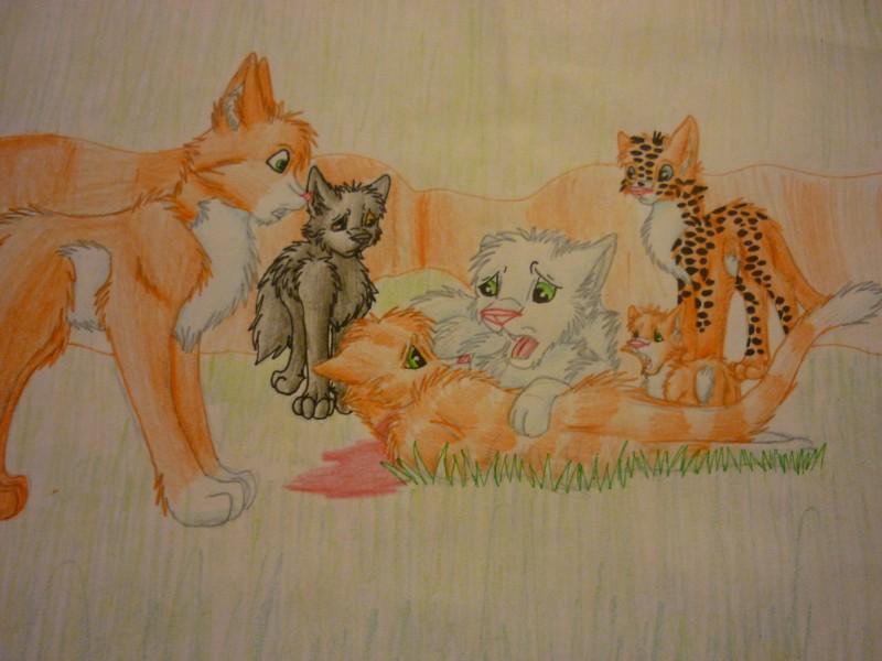 Картинки карандашом коты воители для срисовки