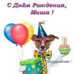 Миша с днем рождения картинки