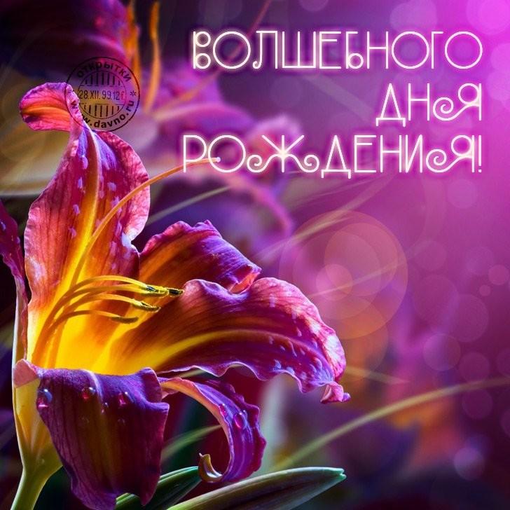 Изображение - Красивые поздравления с днем рождения девушке в открытках S-dnem-rozhdeniya-kartinki-devushke-17