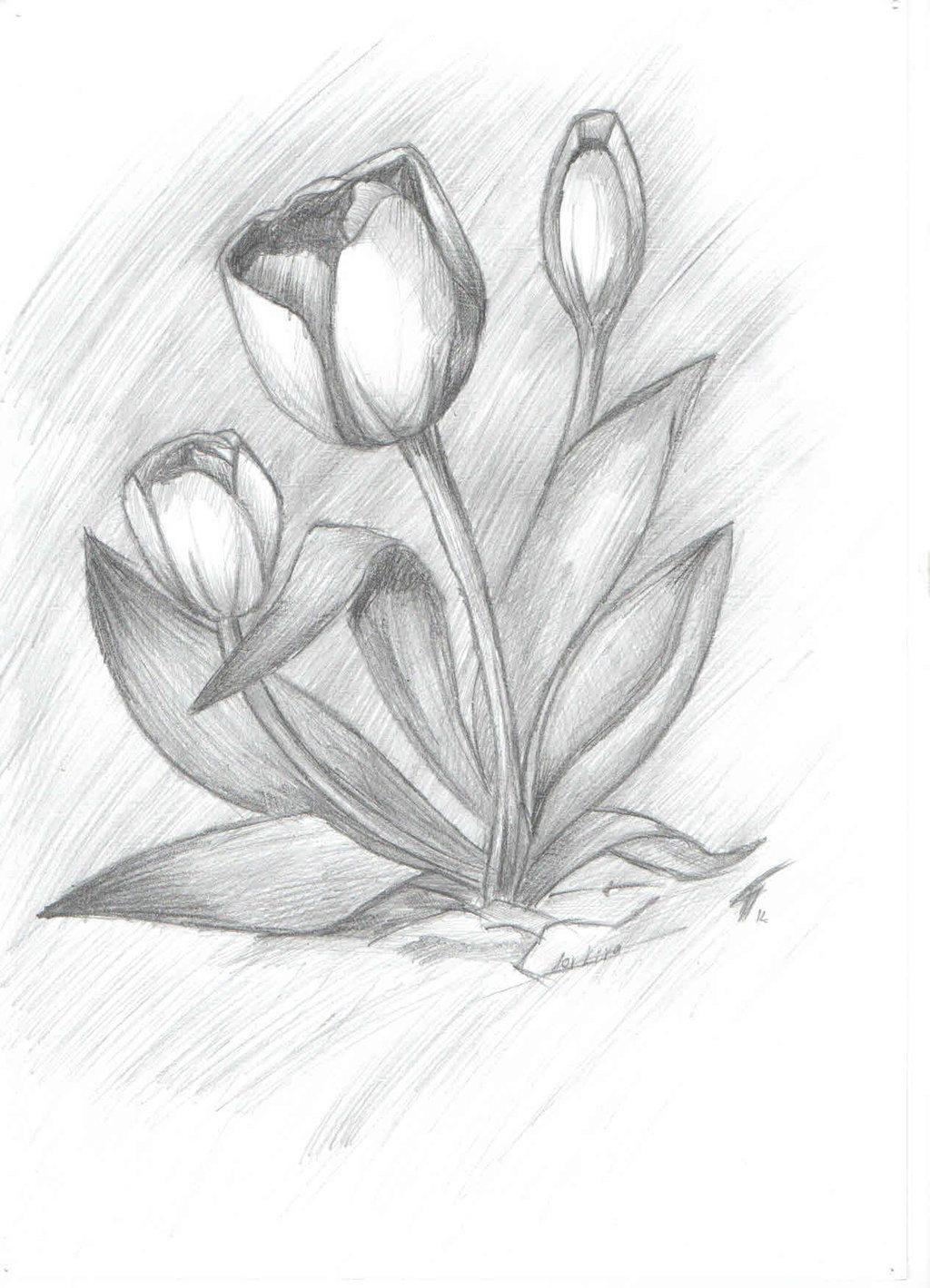 Простые цветы для начинающих