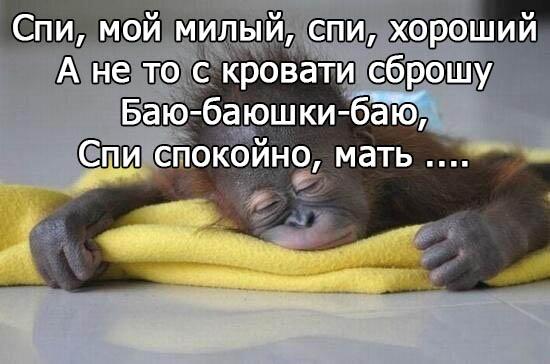 Мам, спокойной ночи друзьям в картинках прикольные