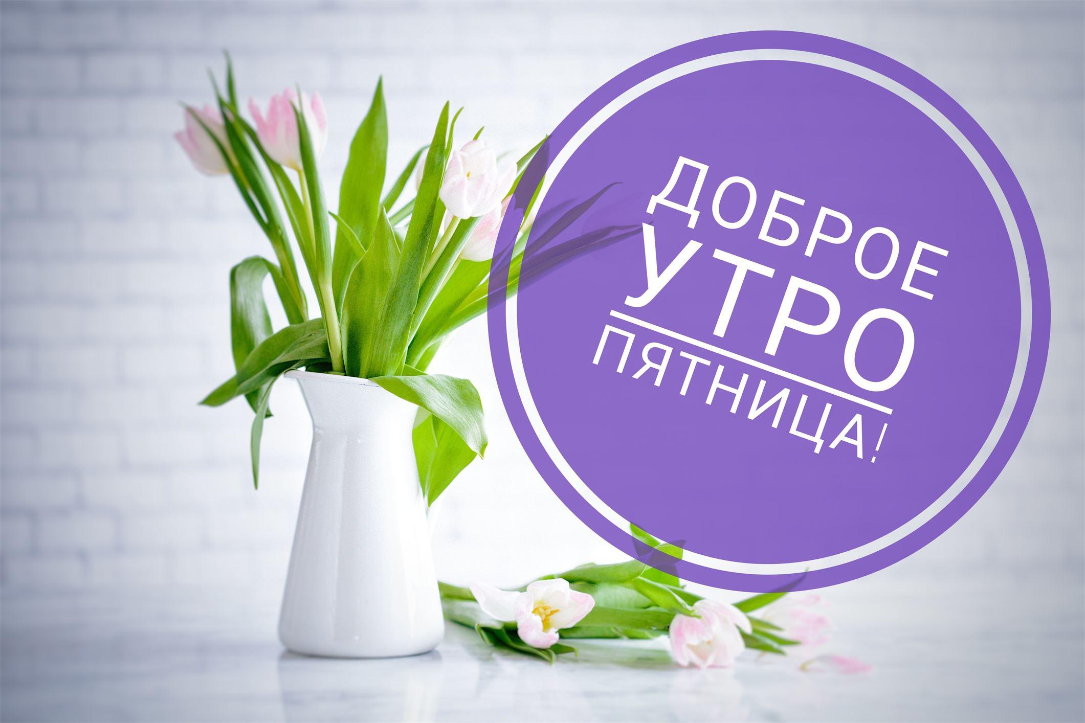https://funpick.ru/wp-content/uploads/2018/02/3c13892b4c7373af0d4e4fc23f13d961.jpg