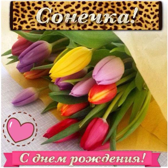 Изображение - Поздравление с днем рождения сонечке 17183225