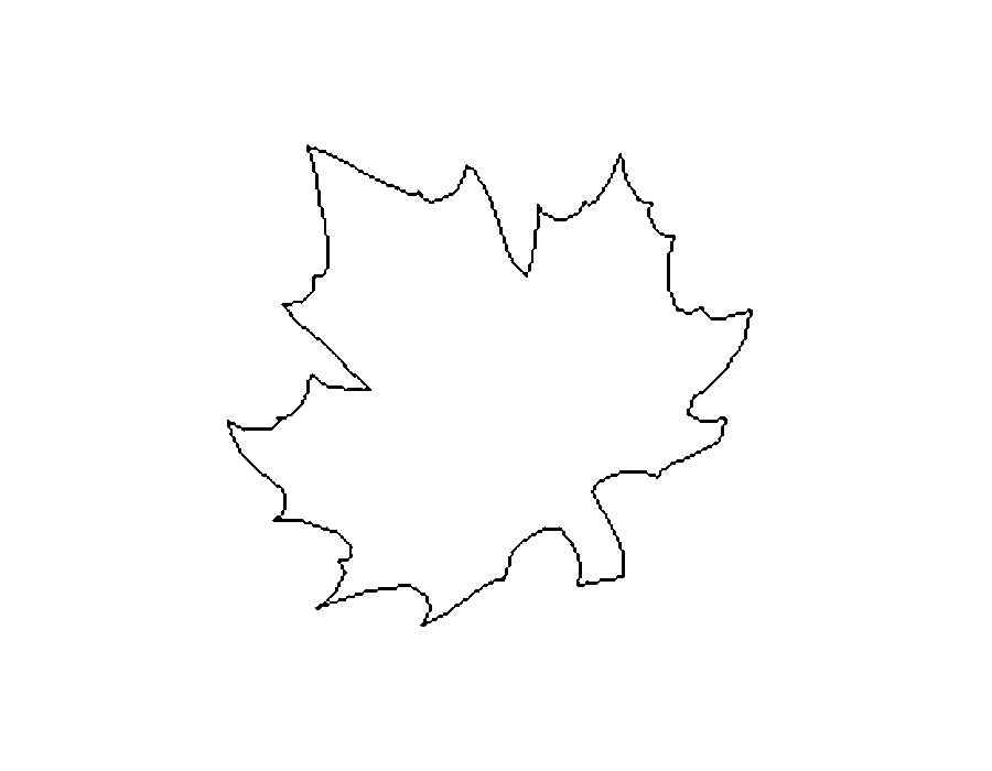 Кленовый лист рисунок-шаблон (15 картинок распечатать и вырезать)